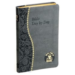 Bible Day by Day - Vinyl Cover