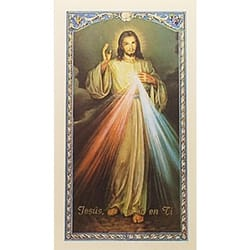 Nuestro Senor de la Misericordia (Chaplet of the Divine Mercy) – Spanish Prayer Card