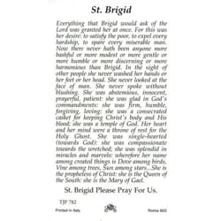 St. Brigid Patron Saint Prayer Card w/Medal