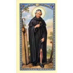 St. Peregrine Laminated Prayer Card
