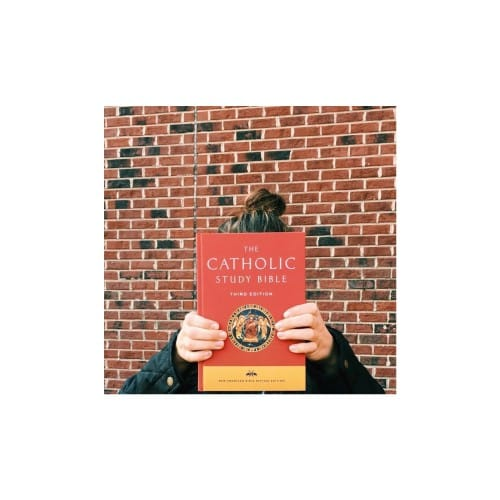 Catholic Study Bible - NABRE, Softcover