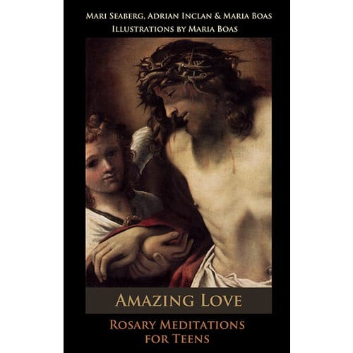Amazing Love: Rosary Meditations for Teens by Adrian Inclan, Mari Seaberg, Maria...