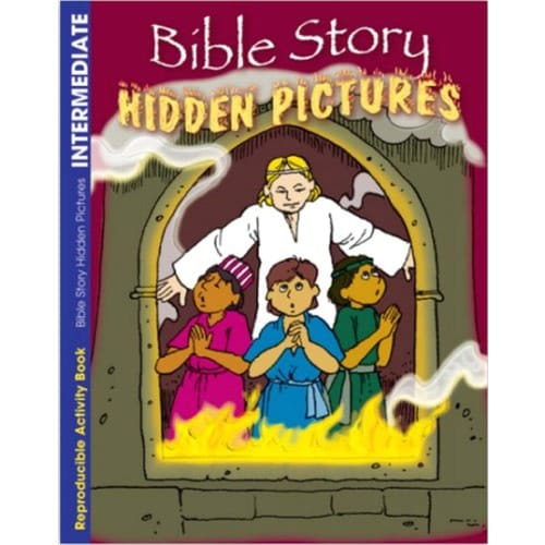Bible Story - Hidden Pictures Activity Book