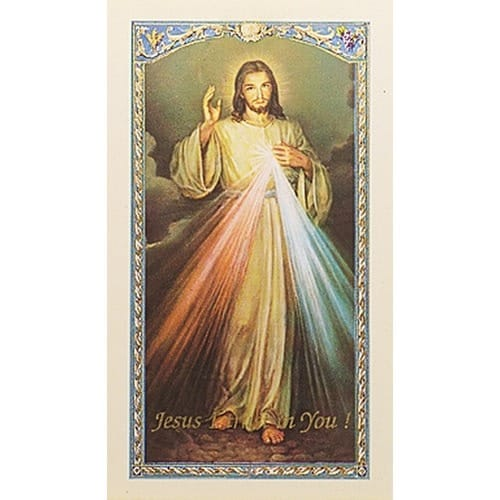 photograph relating to Divine Mercy Chaplet Printable known as The Chaplet of the Divine Mercy - Prayer Card