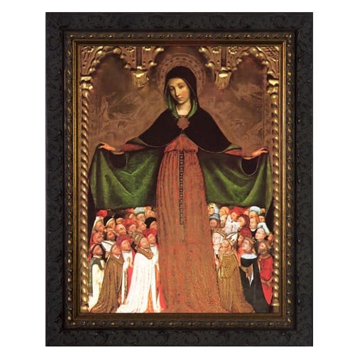 Mary Mother of Mercy Ornate Framed Art - Large