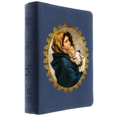 The Madonna of the Streets Bible