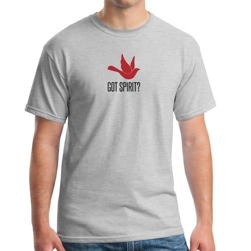 Got Spirit? Grey T-Shirt
