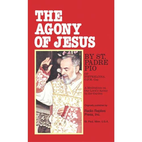 The Agony of Jesus