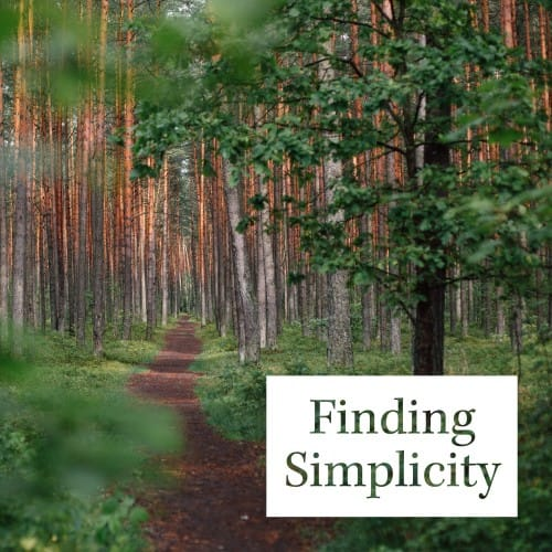 Finding Simplicity - Good Catholic Digital Content Series