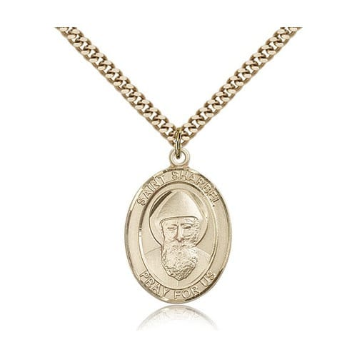 14kt Gold Filled St. Sharbel Pendant w/ chain