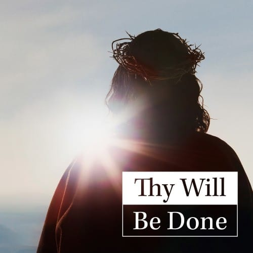 Thy Will Be Done - Good Catholic Digital Content Series