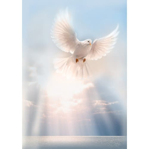 White Dove Personalized Prayer Card (Priced Per Card)