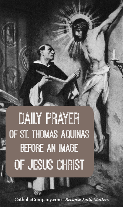 Daily Prayer of St. Thomas Aquinas Before an Image of Jesus Christ