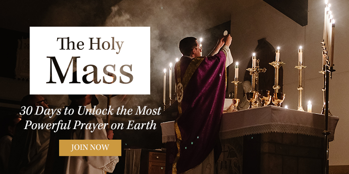 Good Catholic The Holy Mass Series