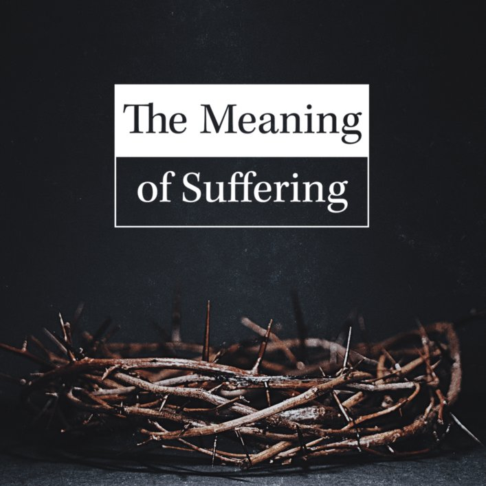 product image for The Meaning of Suffering