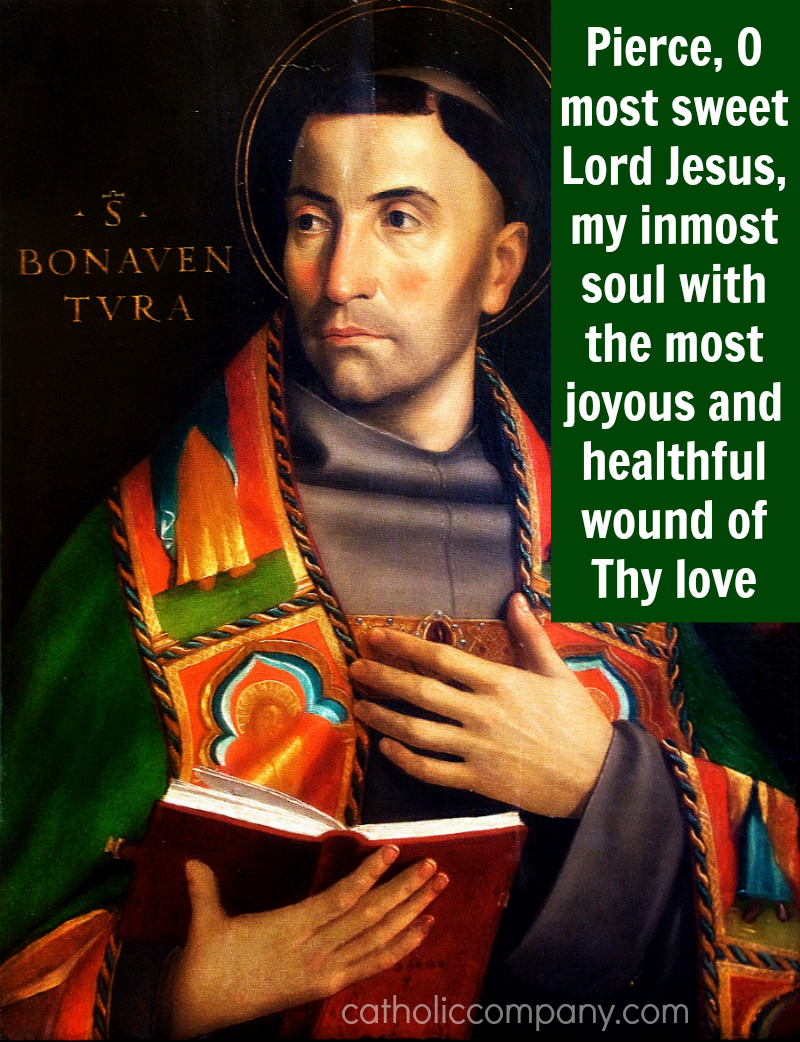 The Life of St. Bonaventure, Doctor of the Church