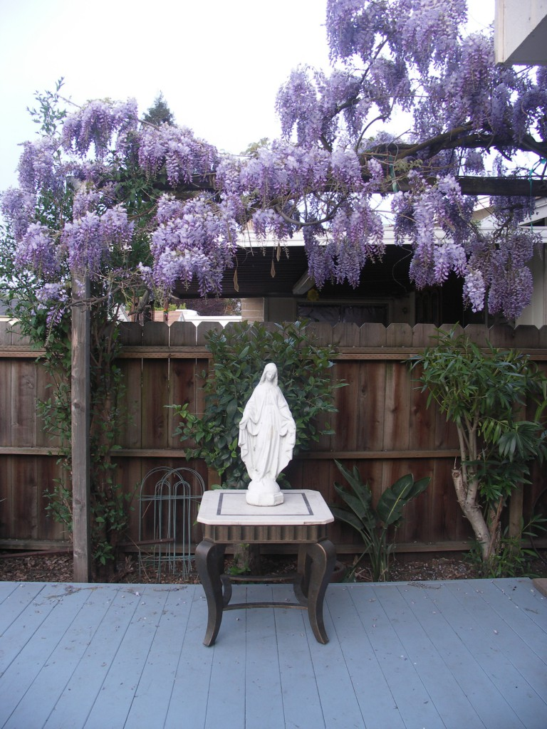 Who says a garden has to stay on the ground? This reader's Blessed Mother statue is framed with gorgeous hanging blooms.