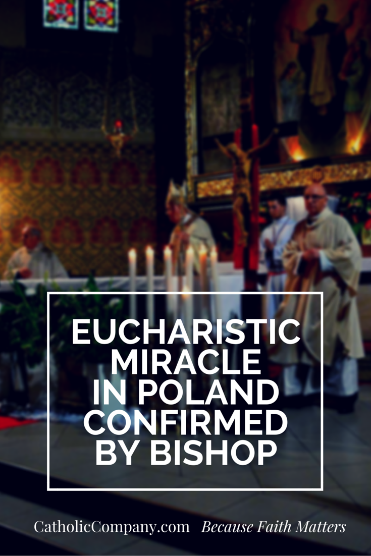 The Eucharistic Miracle from Christmas Day 2013 in Legnica, Poland, was scientifically tested and shown to be human cardiac tissue.