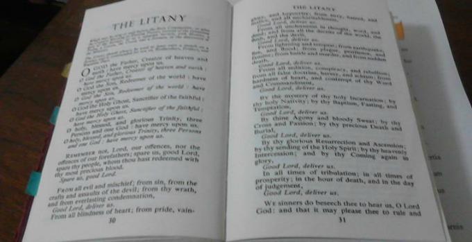 Pray a favorite litany daily