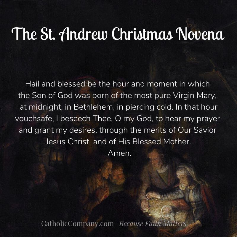 St Andrew Christmas Novena Prayer. Pray his 15 times a day from November 30th to December 24th.